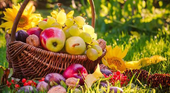 Najzdravija hrana u kolovozu