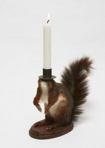 noortje-zijlstra-vjeverica