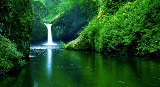Smanjenje zaštite Amazonske prašume?