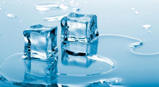 Otkrivena 18. vrsta leda