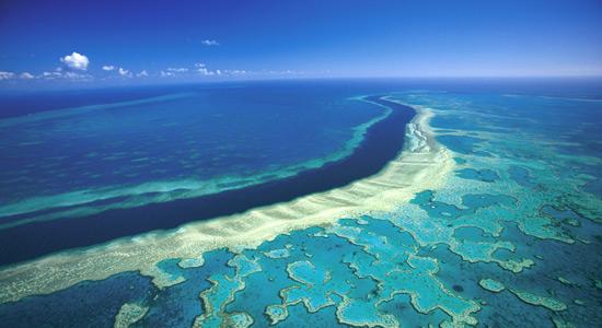 Obnavljanje Velikog koraljnog grebena