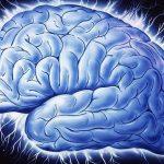 500 gena povezano s inteligencijom