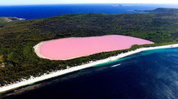 Ružičasto jezero Hiller