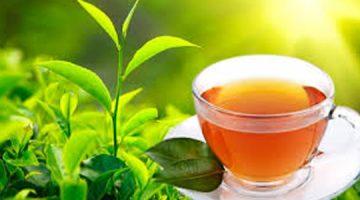 Nanočestice čaja uništavaju stanice karcinoma