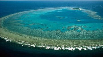 Projekt za spas Velikog koraljnog grebena