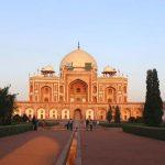 Očuvano tisuće stabala u New Delhiju