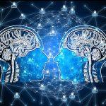 Ženski i muški mozak