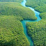 Smanjenje zaštite Amazonske prašume
