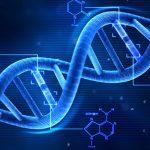Geni koji nestaju