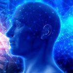 Otkriven novi organ u ljudskom tijelu