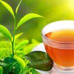 Nanočestice čaja uništavaju stanice raka pluća